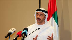 وزير الخارجية #الإماراتي لا نريد ظهور #حزب الله اخر في #اليمن